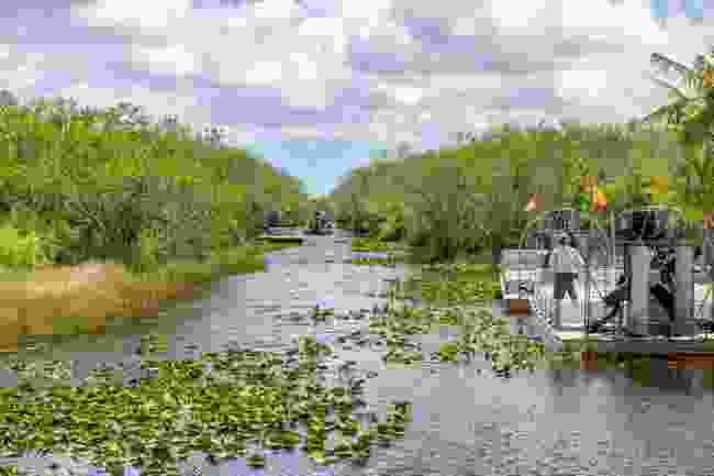 Airboats in Florida (Shutterstock)