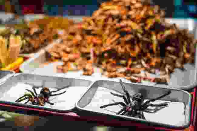 Tarantulas as a snack (Shutterstock)
