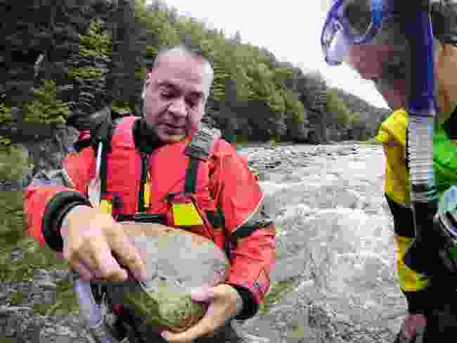 Kurt Samways shows how a healthy salmon population bolsters a river's eco-system (Phoebe Smith)