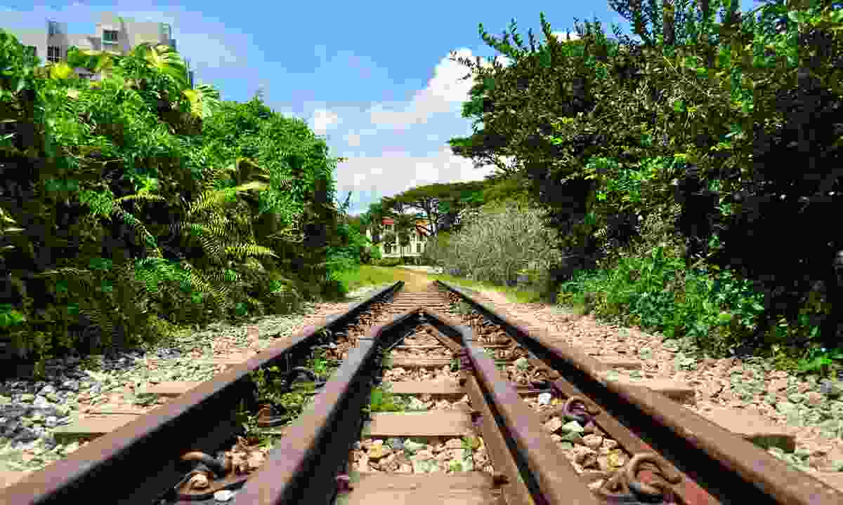 A railway track doubles up as a walkway at Buhit Timah Nature Reserve (Dreamstime)
