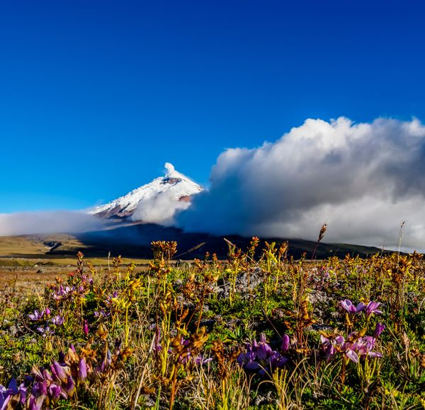 If you like this, try... walking around Cotopaxi. Spend five days walking in the shadow of this perfectly conical, 5,897m-tall volcano.