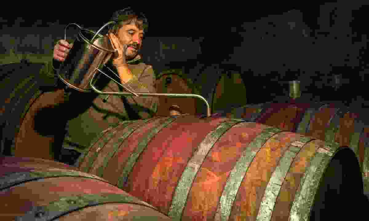 Aleks Klinec in the cellar (Ryan Opaz)