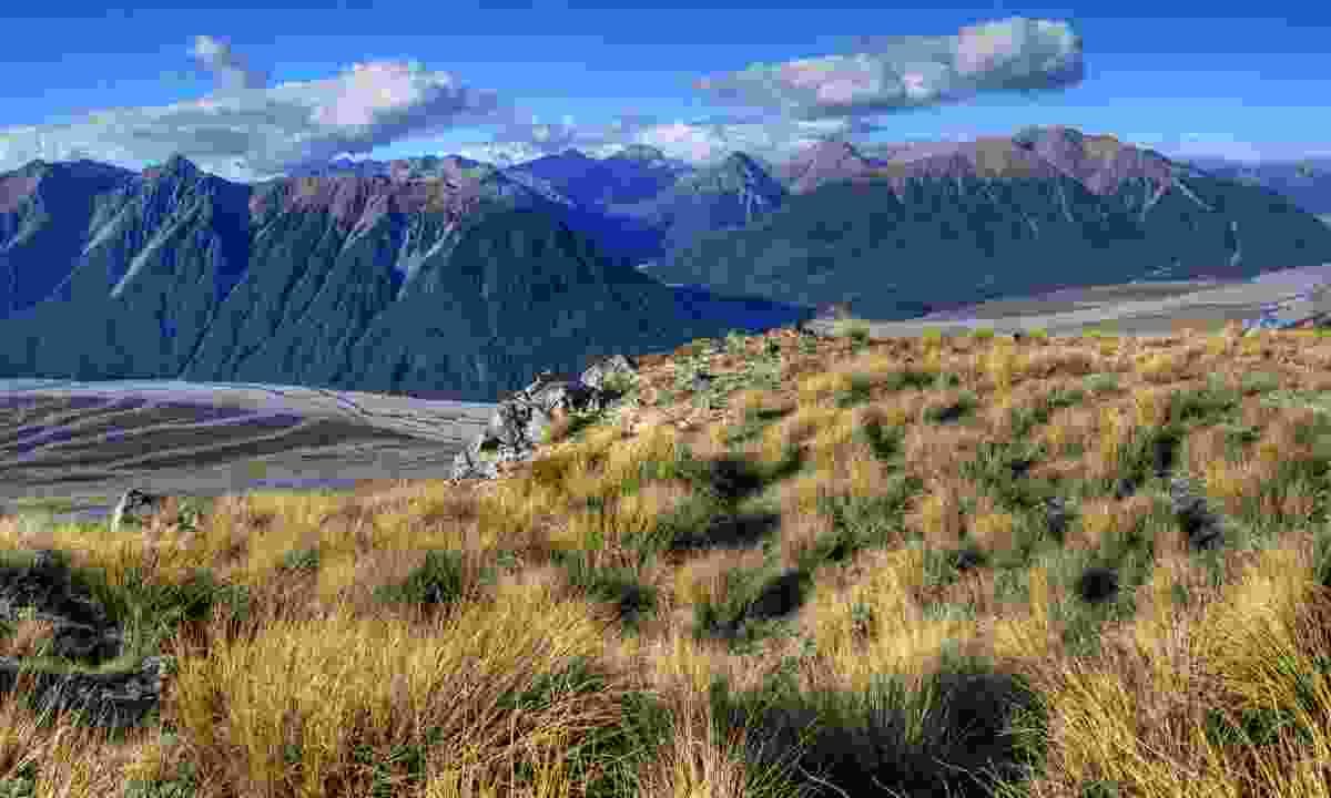 Arthur's Pass National Park (Dreamstime)