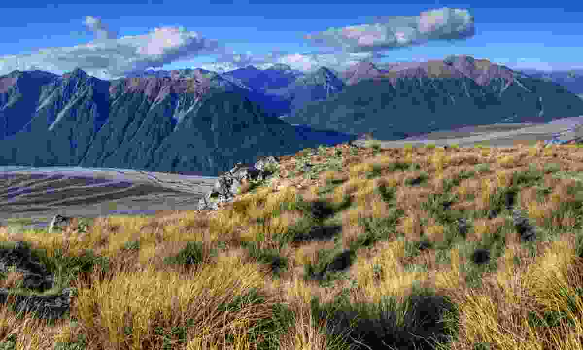 Arthur's Pass National Park (Dreamstime)