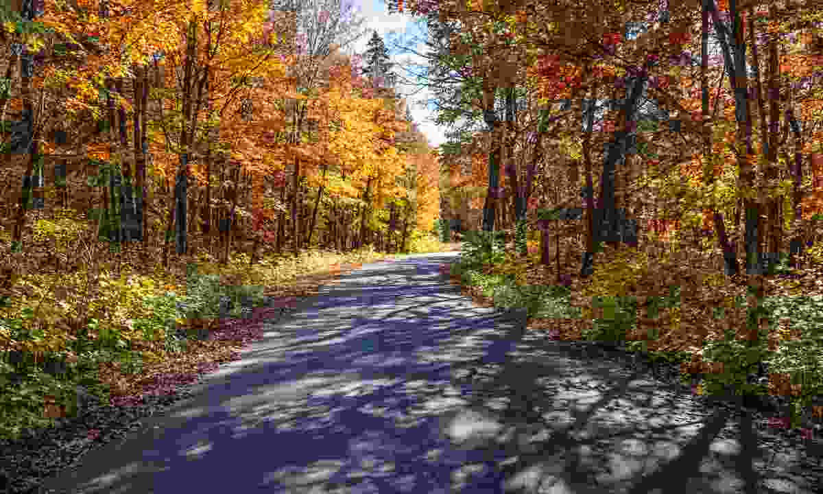 Autumn road in Ontario (Deamstime)