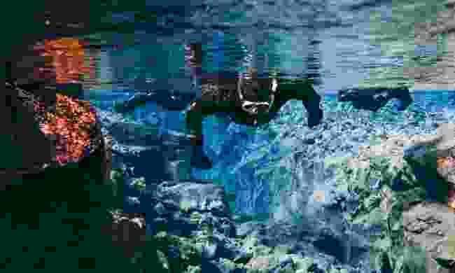 Diving the Silfra fissure (Shutterstock)