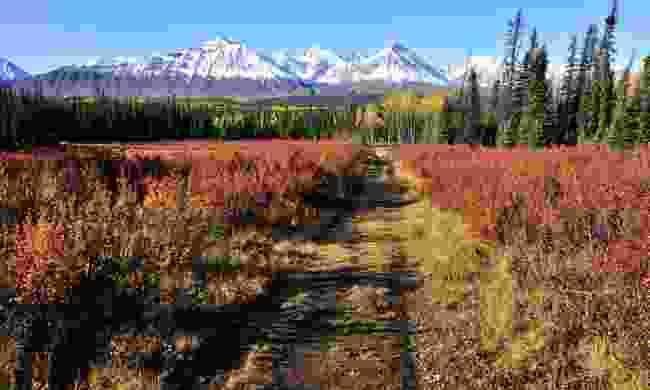 Kluane National Park landscape (Dreamstime)