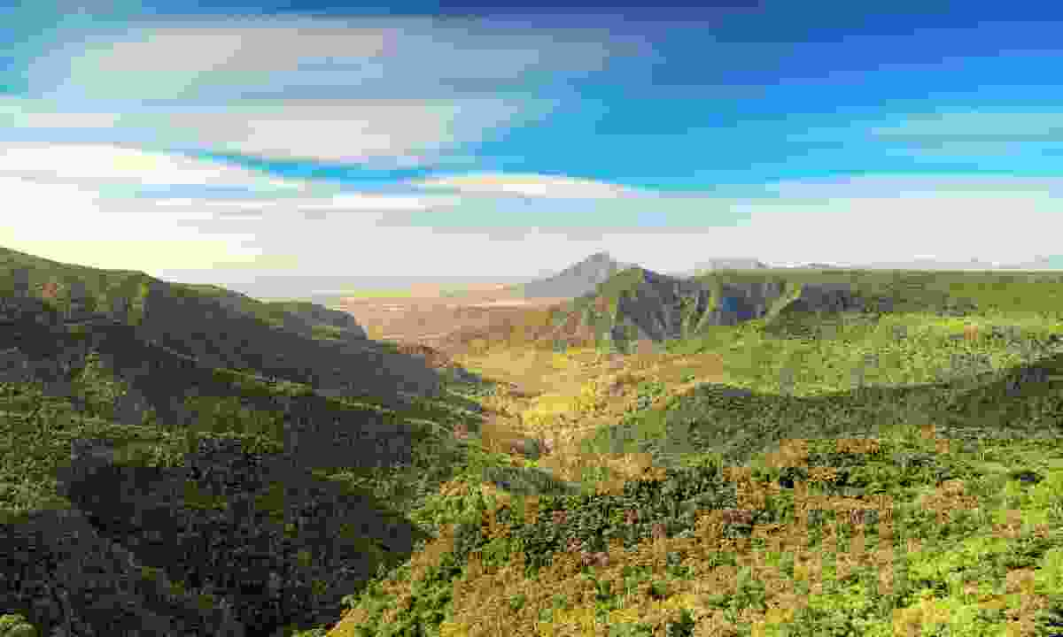 A view over the vast and verdant Black River Gorges National Park (Dreamstime)