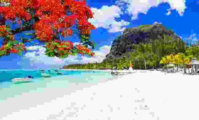 One of Mauritius' white beaches (Shutterstock)