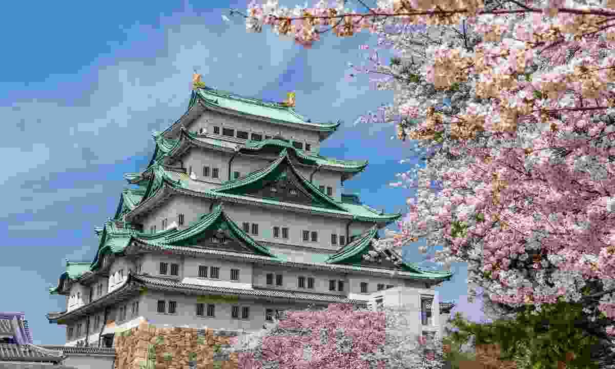Blossom at Nagoya Castle (Shutterstock)