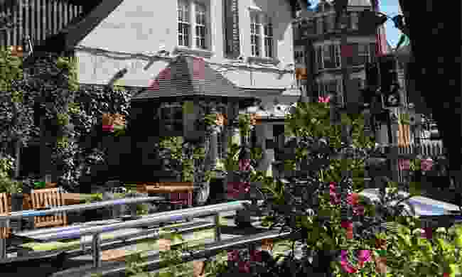 A small section of the huge garden outside The Woodman in Highgate (The Woodman)