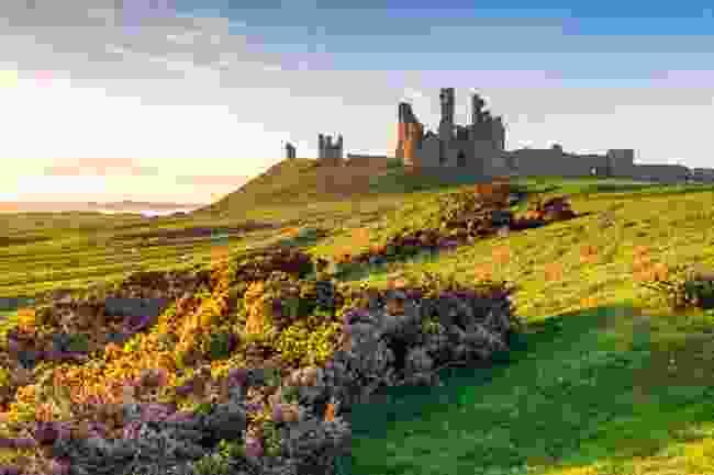 Dunstanburgh Castle, Northumberland (Shutterstock)