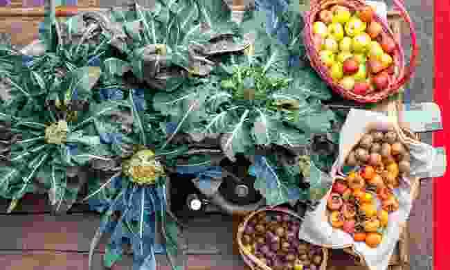 Sample food from local producers (Fabio Staropoli/ Garda Trentino)