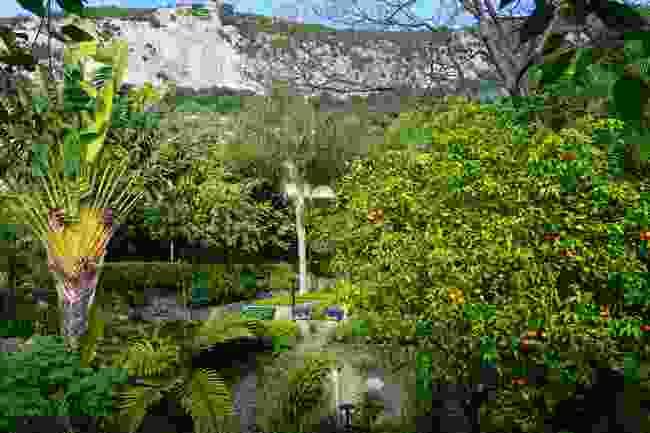 Gibraltar Botanic Gardens (Shutterstock)