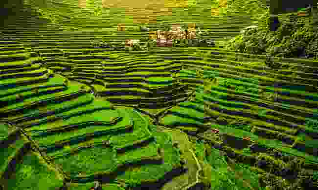 Trek through the Ifugao Rice Terraces, Philippines (Shutterstock)