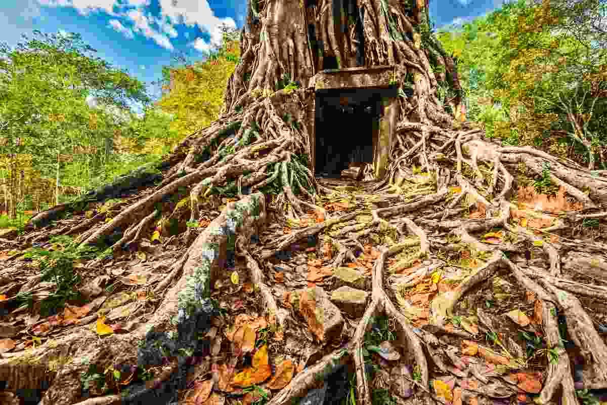 Pre-Angkorian temple complex ruins, Sambor Prei Kuk, Kampong Thom, Cambodia (Dreamstime)