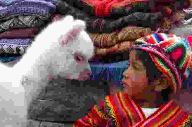 Arequipa, Peru (LATA)