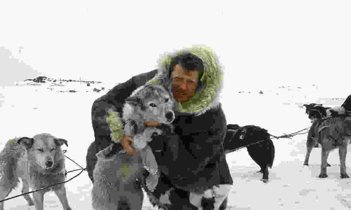 Benedict with a pack of huskies (Benedict Allen)