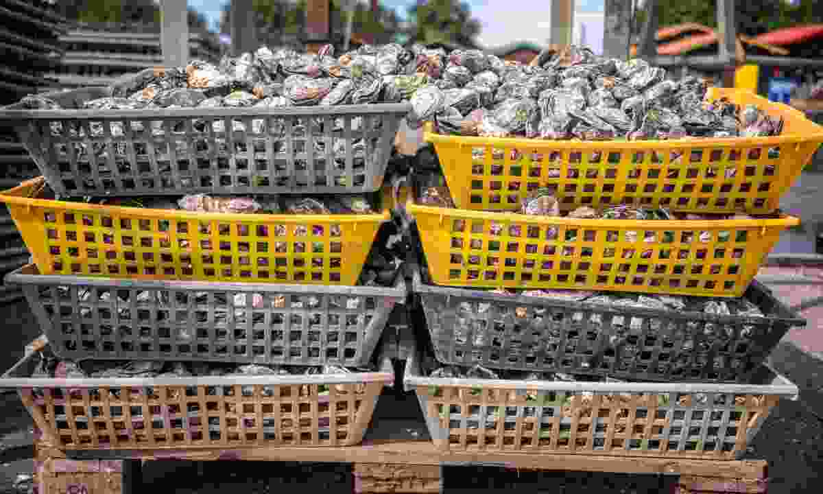 Oysters baskets in the port of La Teste, Bassin d`Arcachon (Dreamstime)