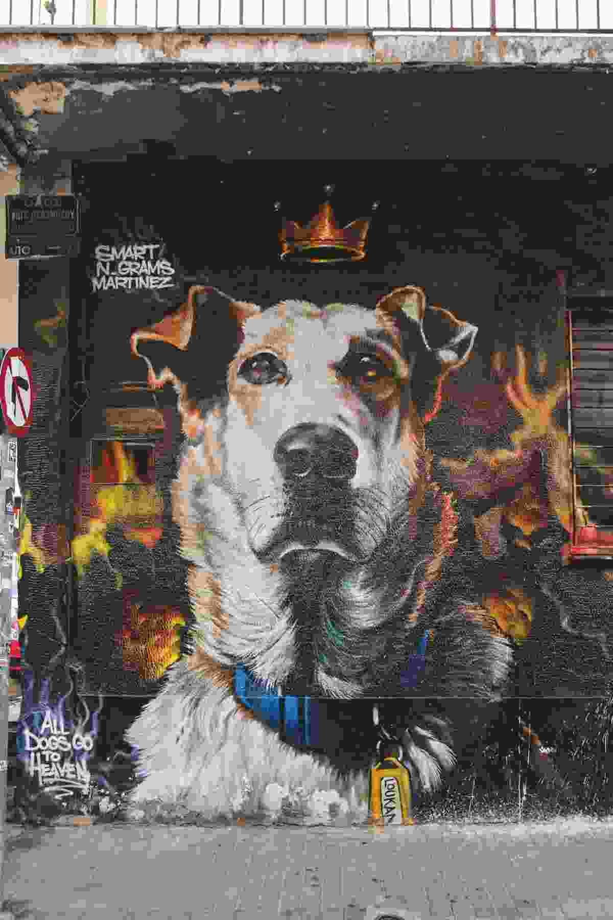Street art portrait of Loukanikos (Yannis Varouhakis)