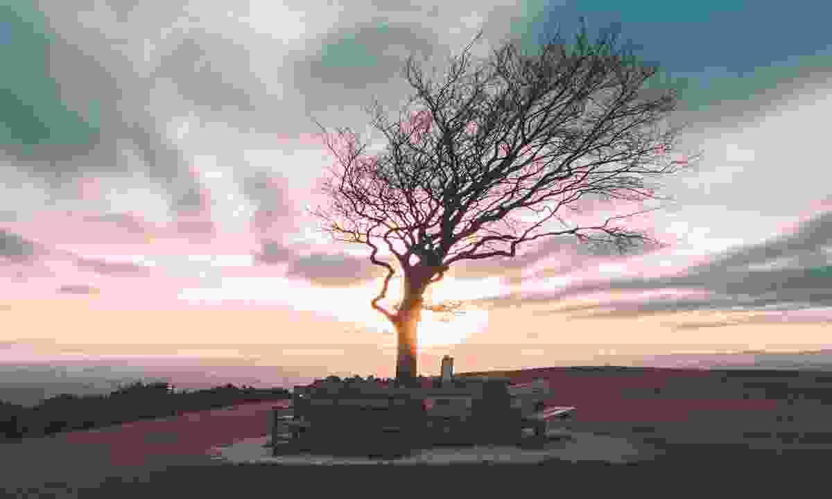 Sunset on Cleeve Hill (Shutterstock)