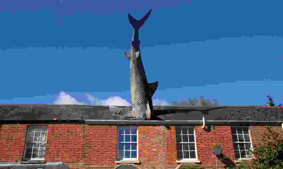 The famous shark of Headington (Shutterstock)
