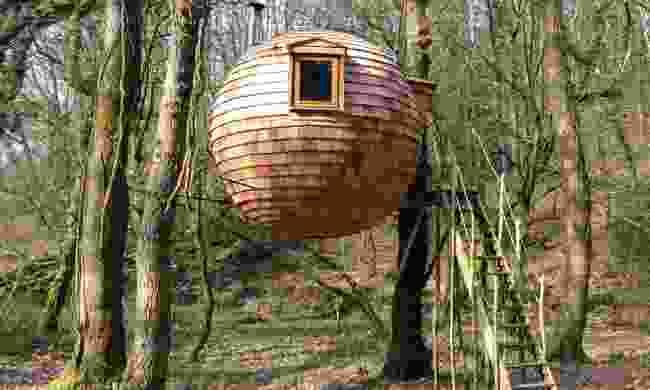 Lost Meadow Treepod, Bodmin, Cornwall (Canopy & Stars)