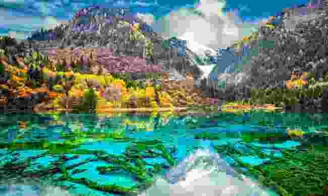 Five Flower Lake in Jiuzhaigou National Park (Shutterstock)