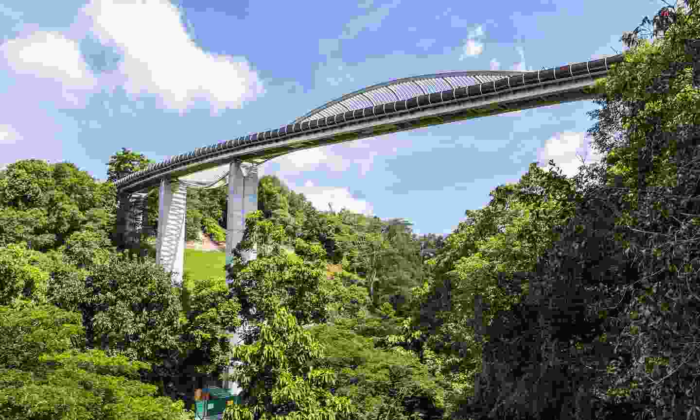 Henderson Waves is not only the tallest pedestrian bridge making up Southern Ridges, but also the highest of its kind in Singapore (Shutterstock)