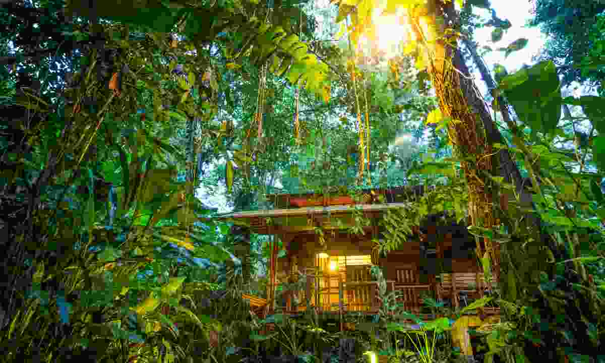 Eco lodge in Puerto Viejo (Dreamstime)
