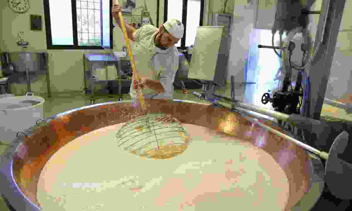 Making Parmigiano-Reggiano by hand (Graeme Green)