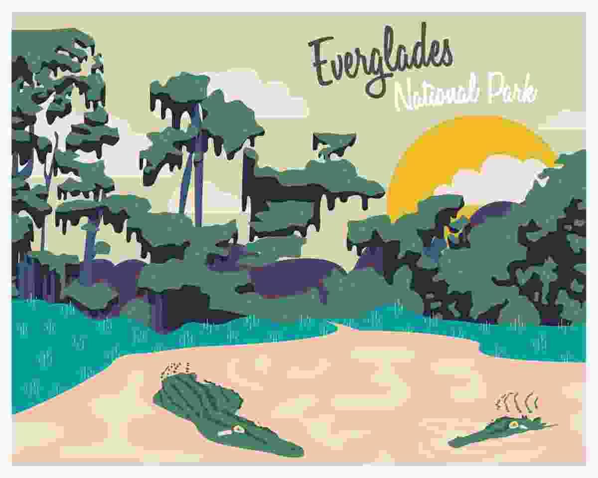 Everglades National Park, USA (gocomparetravel.com)