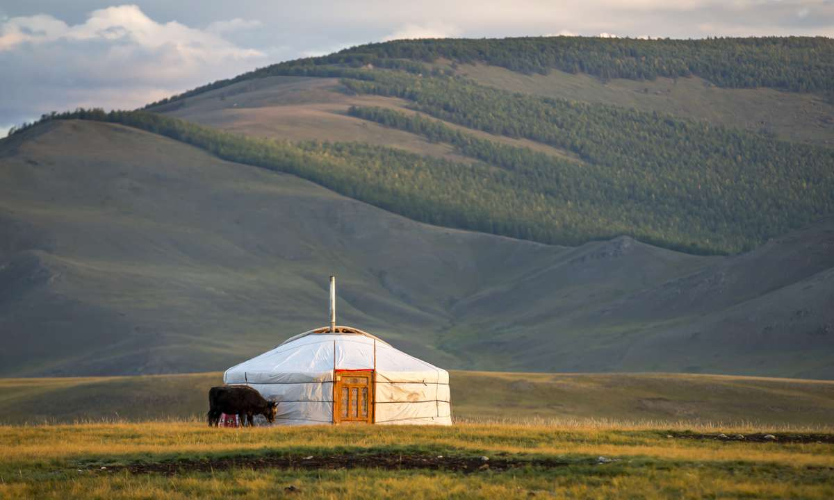 A ger in Northern Mongolia (Dreamstime)