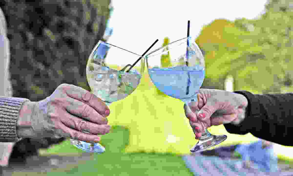 Sip on gin and tonic (Dreamstime)