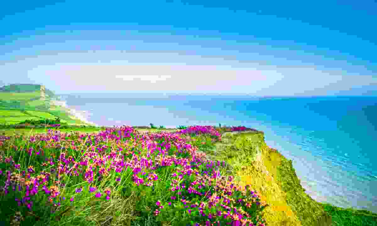 Golden Cap, Dorset (Dreamstime)