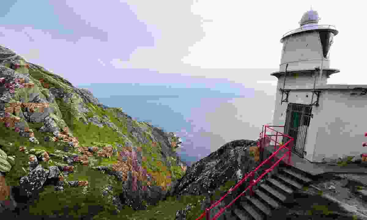 Sheep's Head coastal edge (Phoebe Smith)