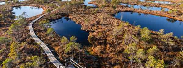 Aerial view of Kemeri Bog, Kemeri National Park, Latvia (Shutterstock)