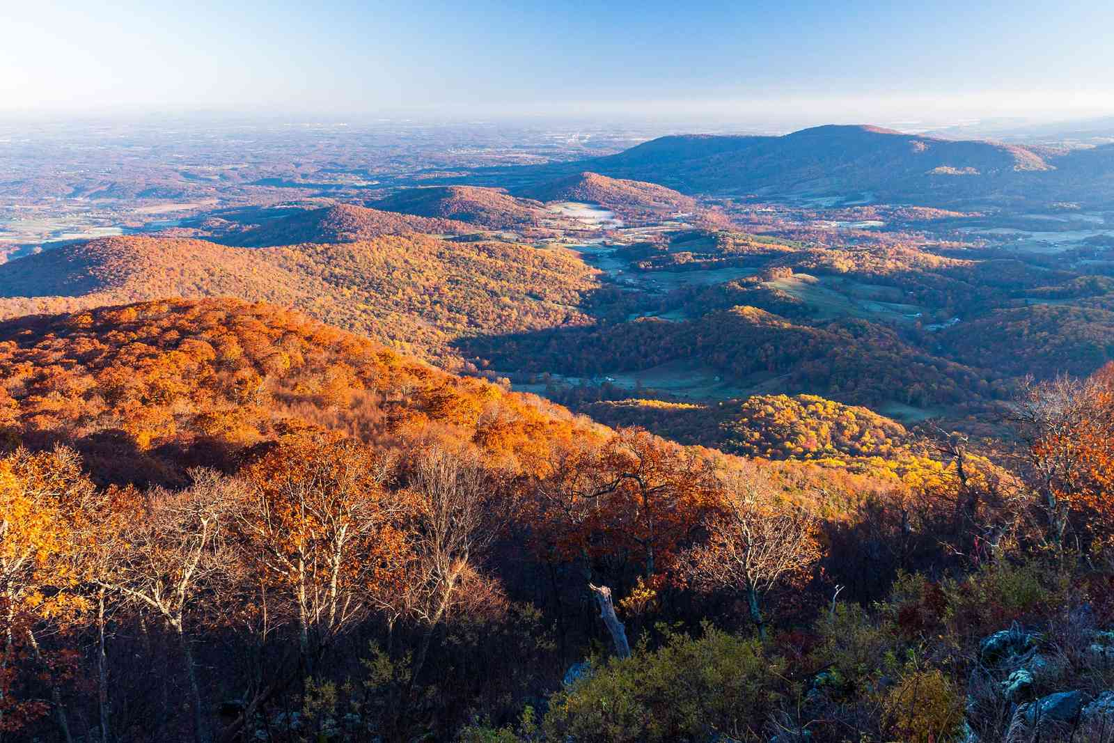 The view from Skyline Drive, Shenandoah National Park, Virginia (Shutterstock)