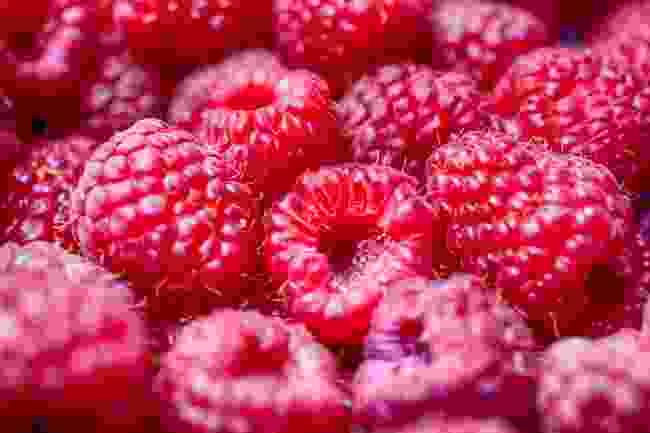 Raspberries galore! (Shutterstock)