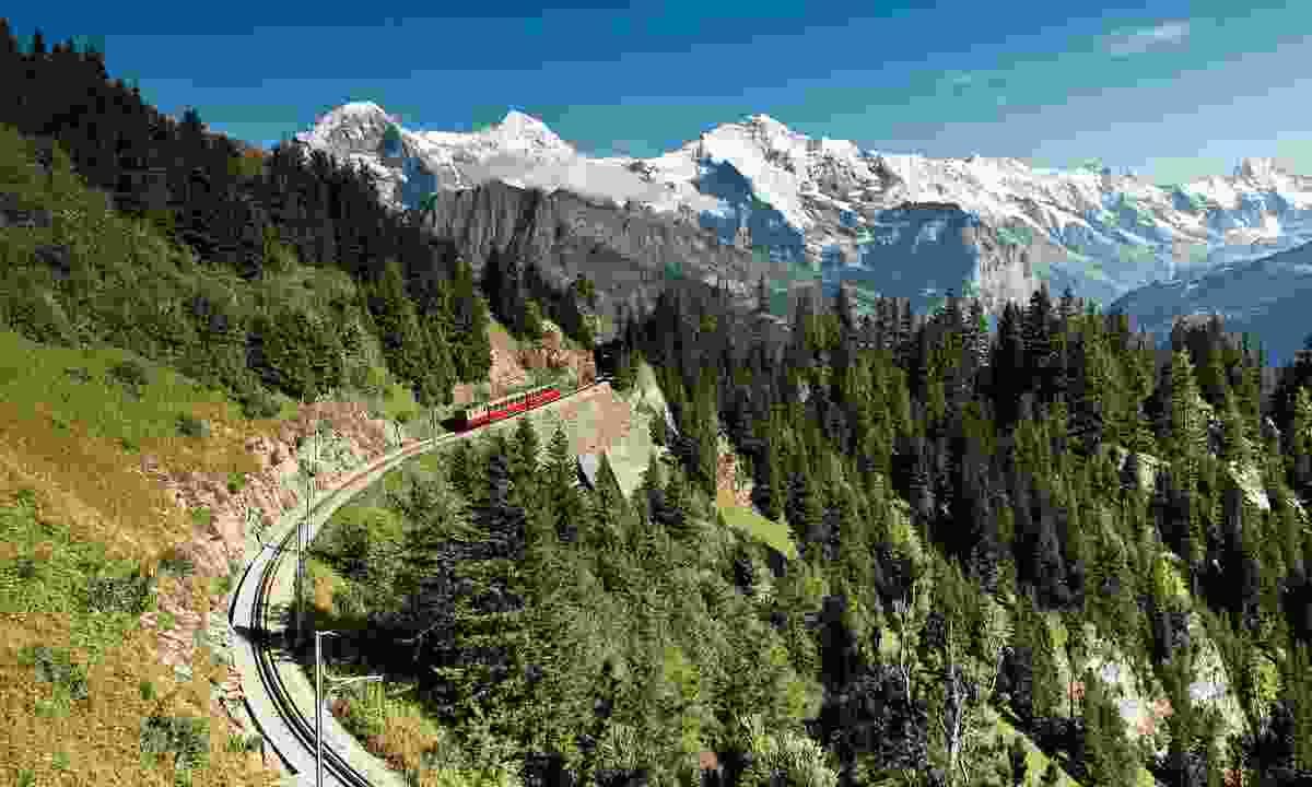 The Schynige Platte (Jungfrau Railway Management)