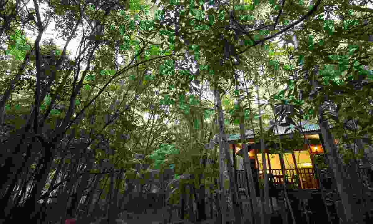 Jungle bungalow at Thala Beach Nature Reserve (William Gray)