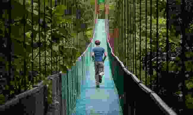 Crossing a jungle bridge in Costa Rica (Dreamstime)