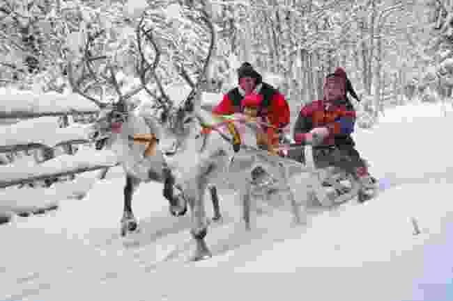 Sami men on a reindeer sleigh in Rovaniemi, Finland (Shutterstock)