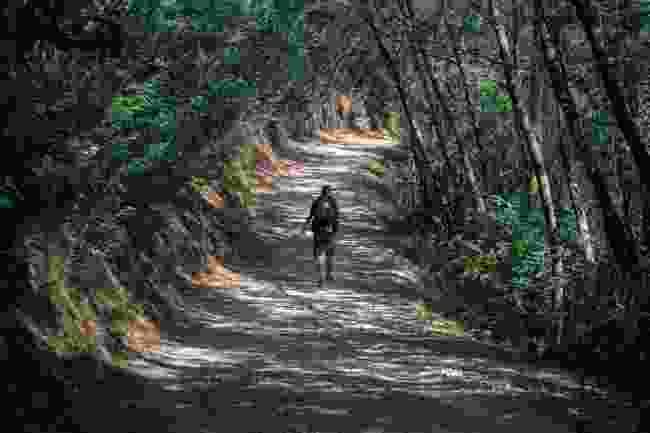 Camino de Santiago, Spain (Shutterstock)