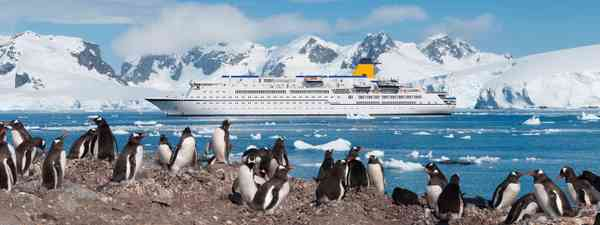 Antarctic Peninsula (Dreamstime)