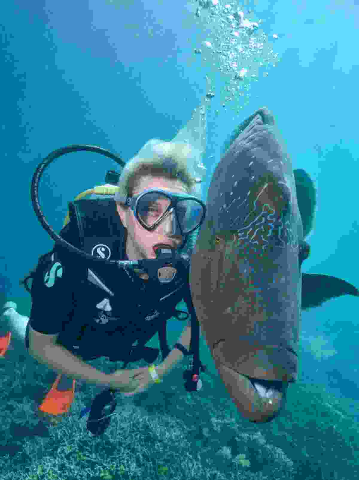 Face-to-face with Wally (Sunlover Reef Cruises)