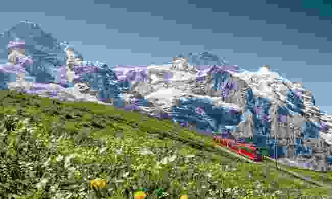 The Jungfrau Railway (Jungfrau Railway Management)