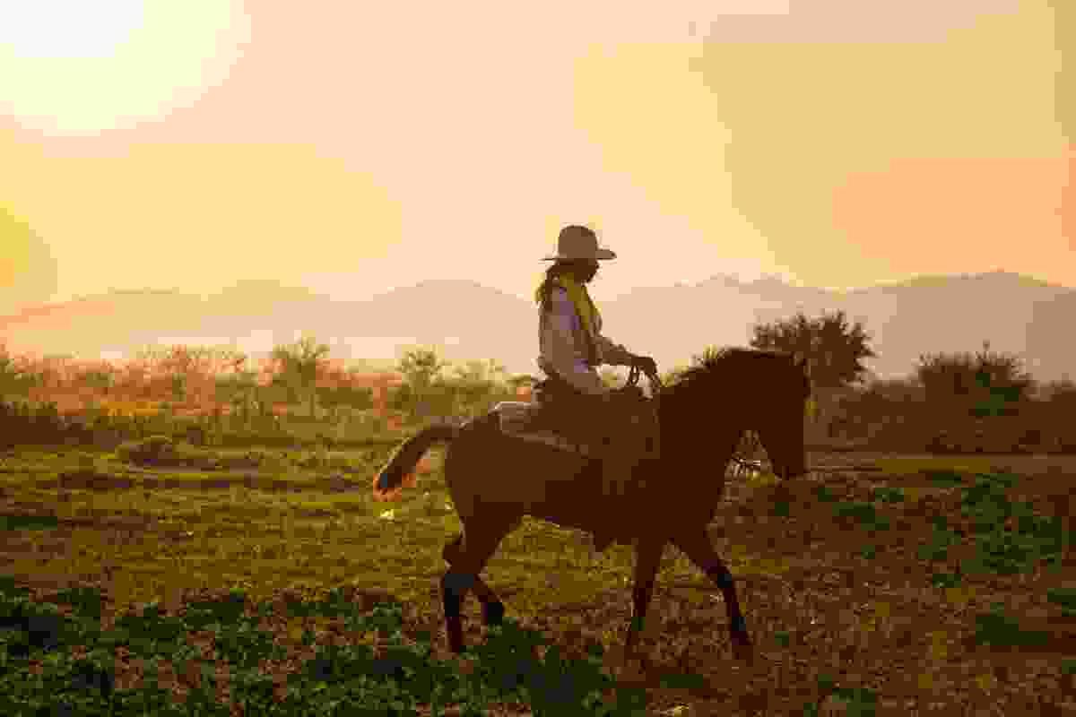 Enjoy cowboy culture at a ranch (Shutterstock)