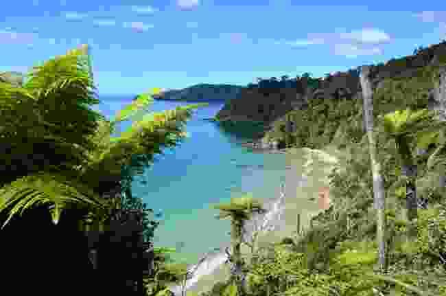 Stewart Island in the sun, New Zealand (Shutterstock)