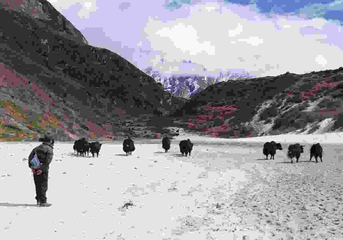 View along the Snowman Trek, Bhutan (Shutterstock)